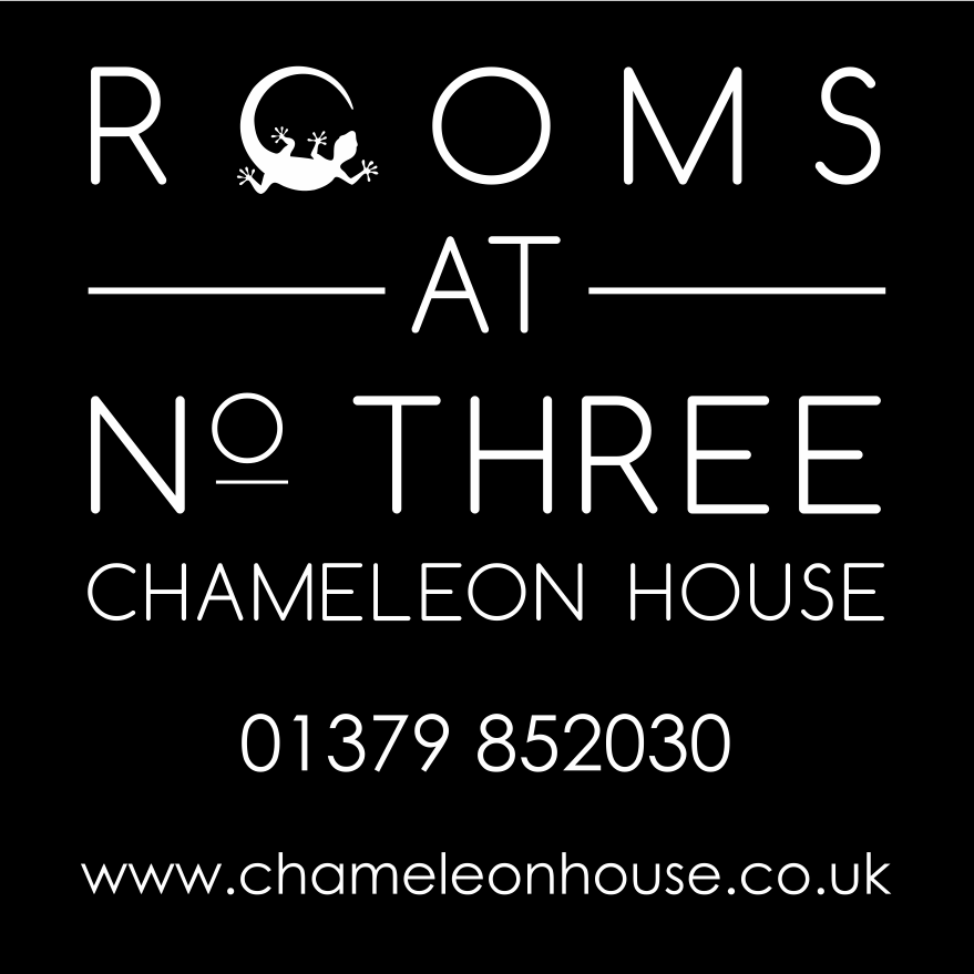 Rooms at No Three Chameleon House